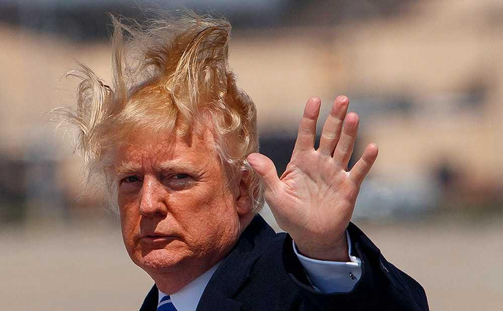 Трамп о своих волосах
