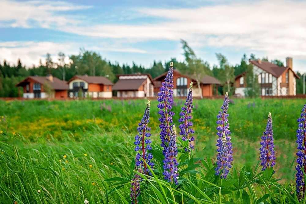 Эксперты рассказали о свежих тенденциях в строительстве коттеджного жилья
