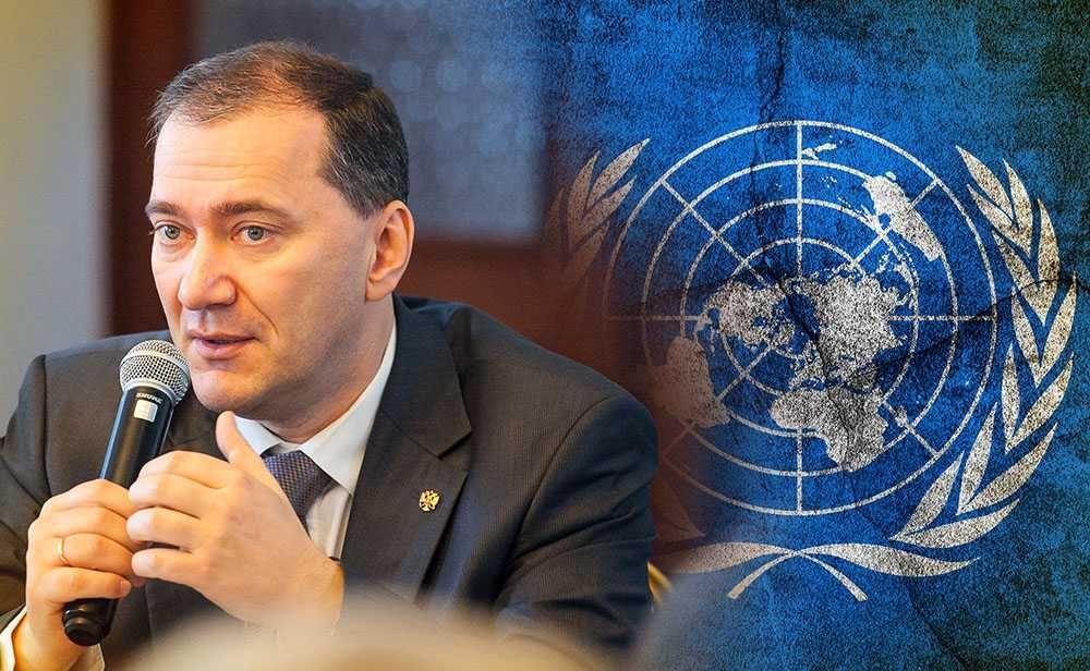 Депутат Госдумы назвал обновленный проект резолюции Киева в ООН предновогодней брюссельской забавой