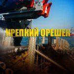 Forbes объяснил причины несгибаемости «Газпрома» и Роснефти во время глобального кризиса
