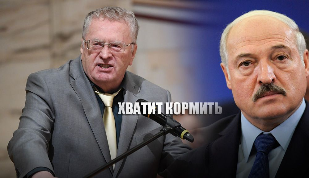 «Сколько еще мы согласны содержать дармоеда» Жириновский прокомментировал выборы Лукашенко