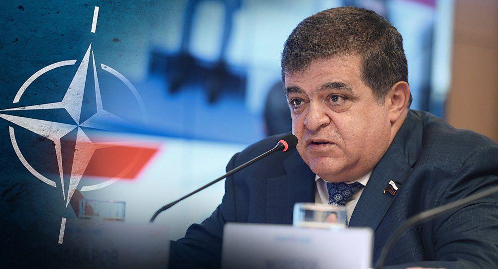 В Совфеде пообещали проблемы для НАТО в случае силового сценария в РБ