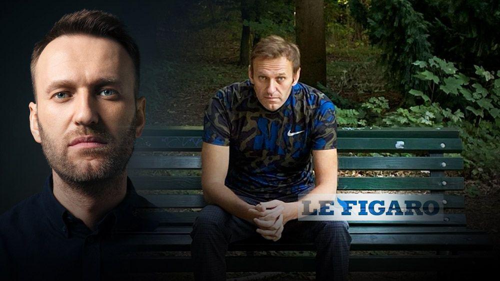 Цирку конец французов поразило скорое выздоровление Навального