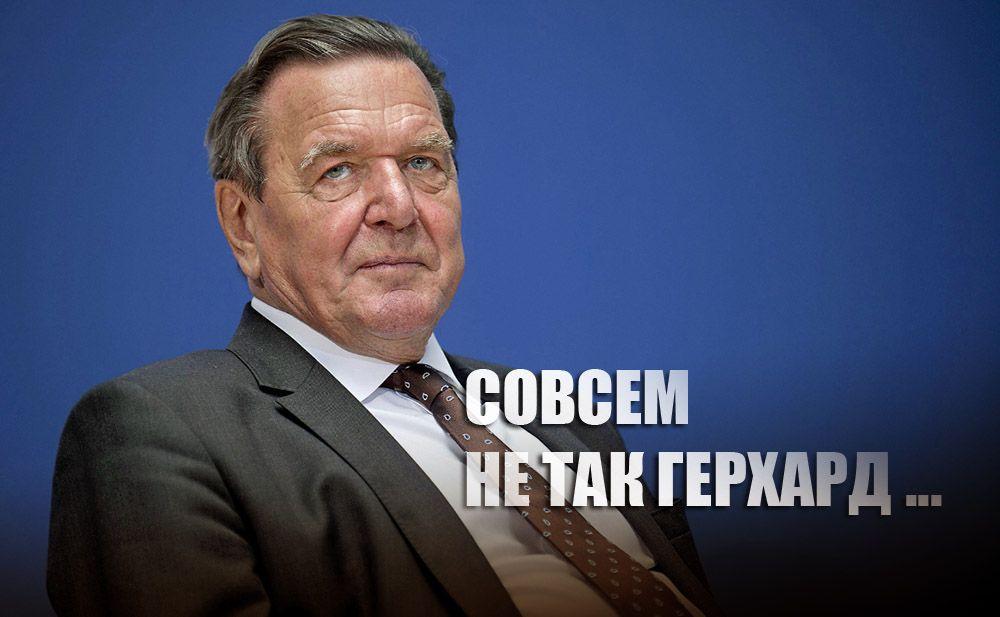 В Госдуме прокомментировали слова Шредера о причинах возвращения Крыма в РФ