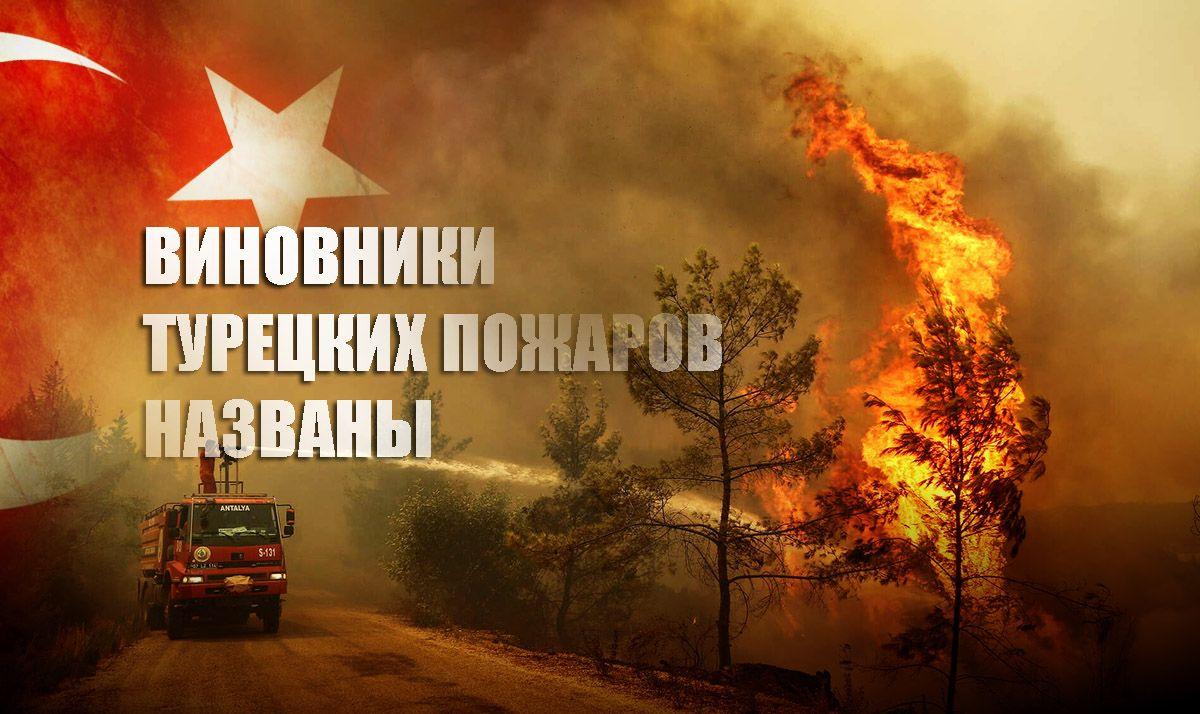 В Турции назвали неожиданных ответственных за поджоги лесов