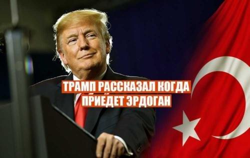 Трамп рассказал, когда ожидается визит Эрдогана в Америку